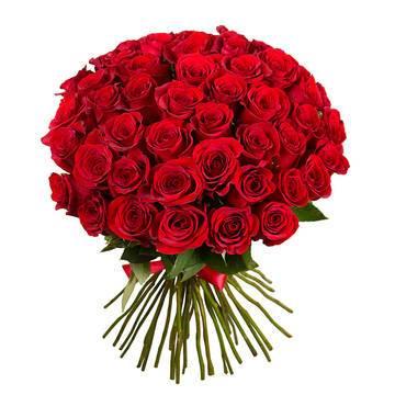 большой букет шикарных красных роз.jpeg